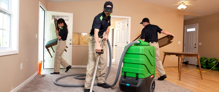 White Plains, NY cleaning services